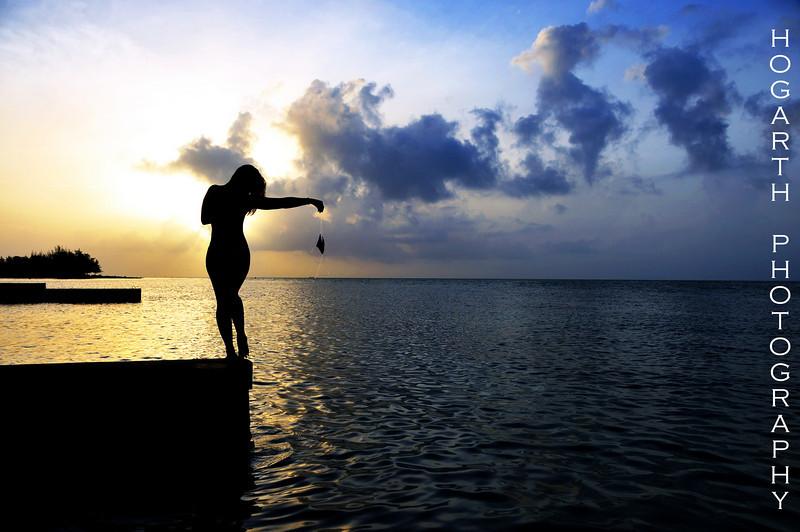 http://hogarth.smugmug.com/Photography/Silhouettes/DSC6127/659948821_tcSni-L.jpg